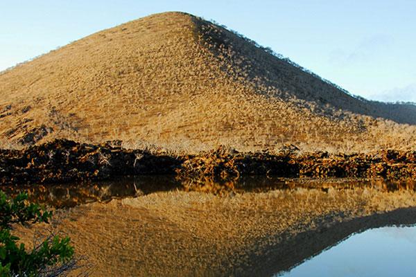 Cormorant Point