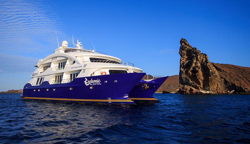 Endemic Cruise