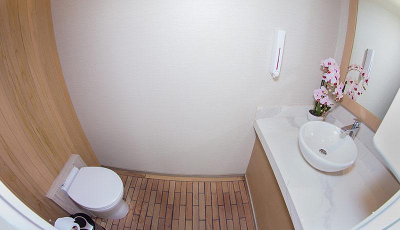 Endemic Bathroom