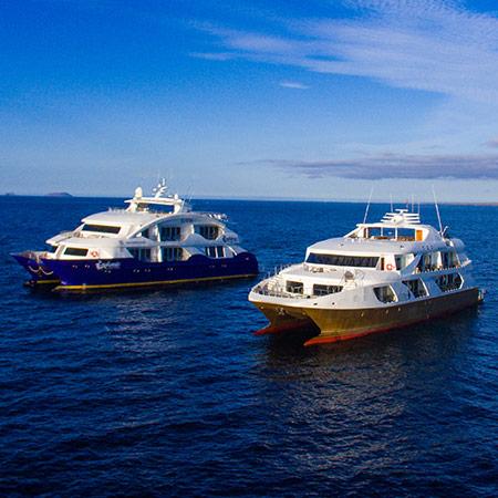 Golden Catamarans