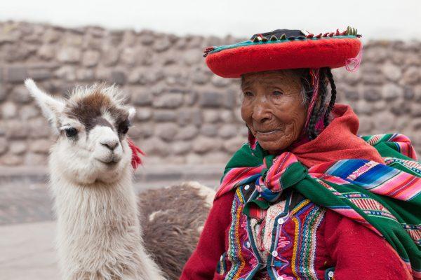 Peru Llama